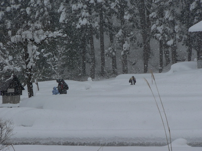 85cm降雪
