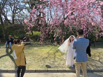 結婚式記念撮影会