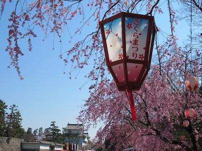 名古屋城桜まつり