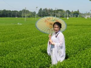 茶畑と漢服