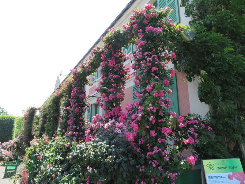 令和元年の春「浜名湖ガーデンパーク花フェスタ2019」