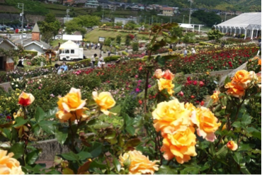 Welcome to『ROSE HILL PARK SHIMADA』