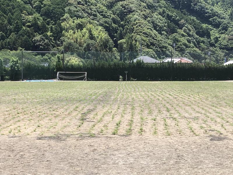 瀬戸谷中学校グランド芝生化